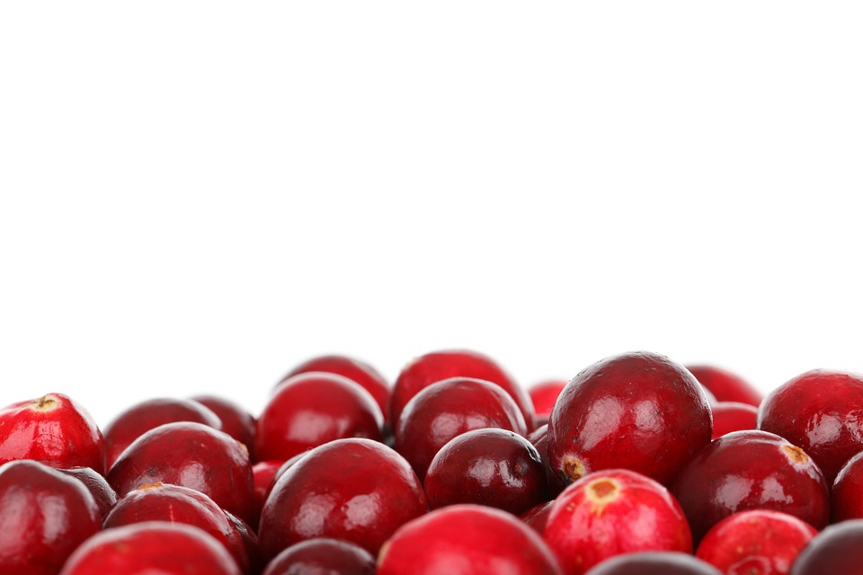 FDA Allows Health Claim for Cranberry Products